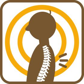 背骨・骨盤